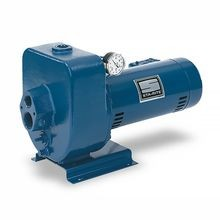 Pentair - 1 HP Sta-Rite Pump