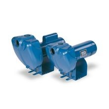 Pentair - 2-1/2 HP, 230V, 1 Phase Centrifugal Pump