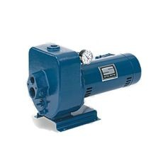 Pentair - 1-1/2 HP Sta-Rite Pump