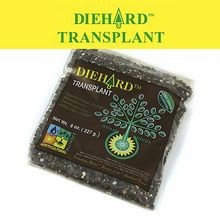 Horticultural Alliance - DIEHARD Transplant - 8 OZ BAG