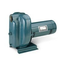 Pentair - 2-1/2 HP, 230V, 1 Phase Centrifugal Pump 2