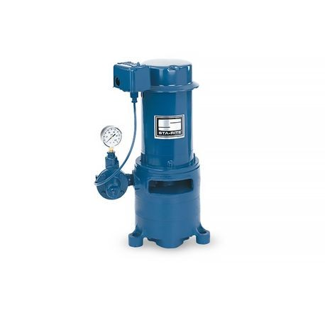 Pentair - 2 HP Vertical Centrifugal Pump Multi-Stage