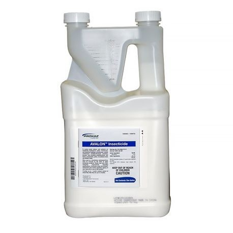 Prokoz - Avalon Insecticide Tip N Pour Jug - 1 GAL | Reinders