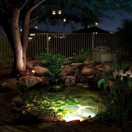 Aquascape 6w Led Garden Pond Spotlight Reinders