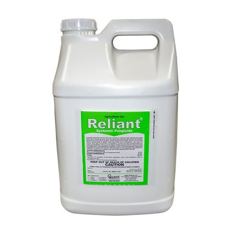 Quest - Reliant Systemic Fungicide, 2 5 GAL | Reinders
