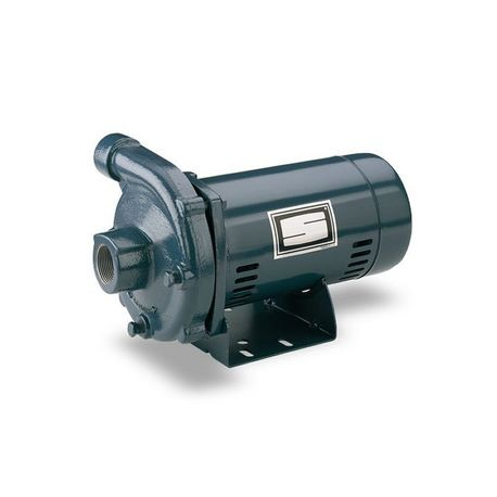 Pentair - 2 HP, 230V, 1 Phase Centrifugal Pump