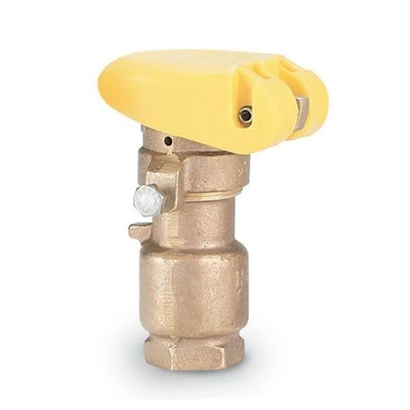 "Rain Bird - 3/4"" Quick Coupler Valve"