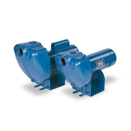 Pentair - 1-1/2 HP, 115V/230V, 1 Phase Centrifugal Pump