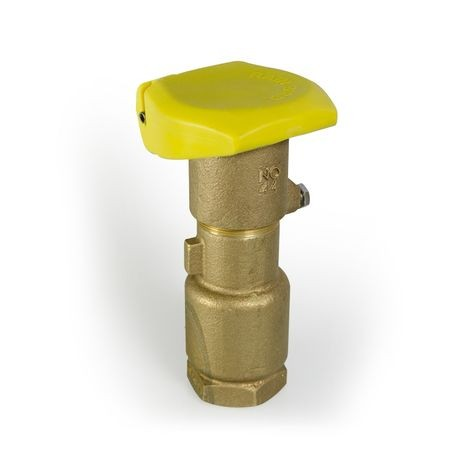 "Rain Bird - 1"" Quick Coupling Valve with 2-Piece Body, Rubber Cover"